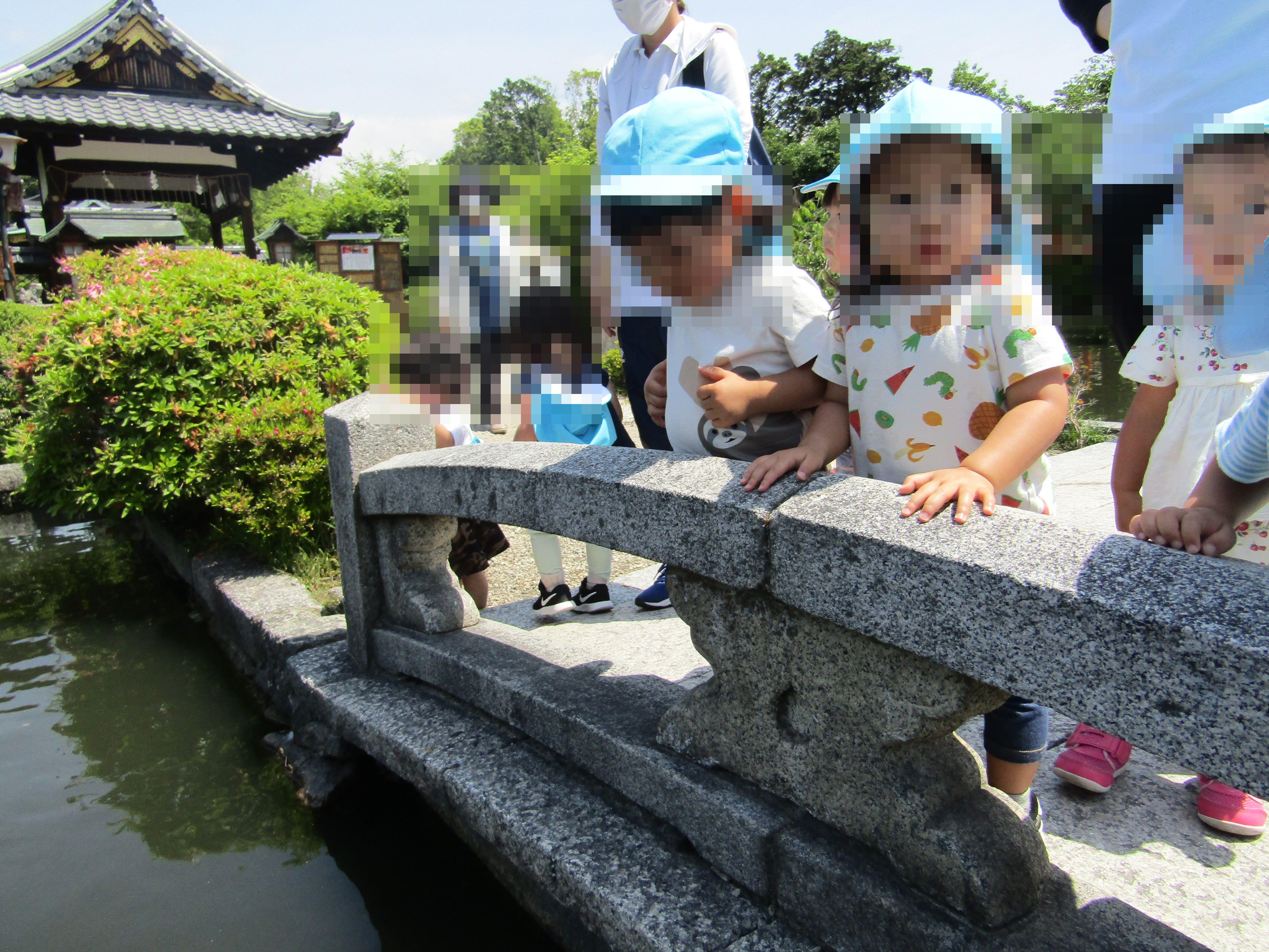 こぐま保育園 神泉苑へお散歩(つぼみ)
